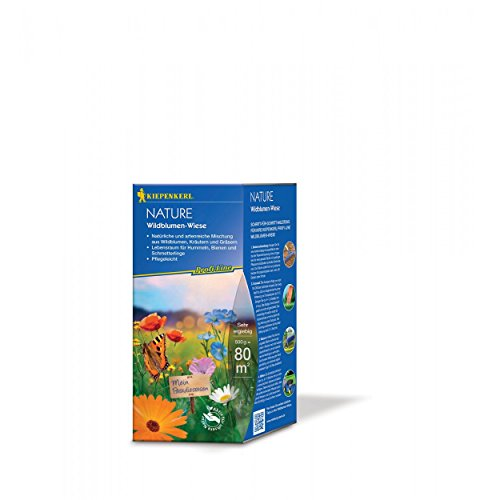 Kiepenkerl Profi Line Nature Wildblumen-Wiese | 500g Blumensaat