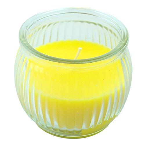 Newsbenessere.com 41uzA6HB-yL Bid Buy Direct® Herbal essenza di citronella candela in barattolo di vetro–Decorazione perfetta per il tuo giardino e tempo libero, barbecue & patio parti–Natural way to keep circostante zanzara free