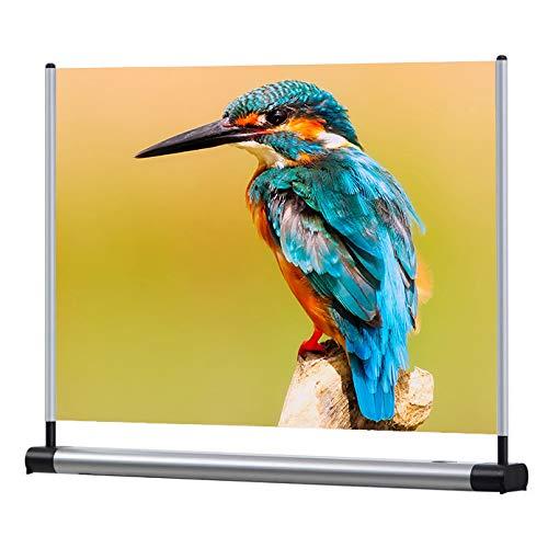 """celexon tragbare Pico-Leinwand mit spezieller Beschichtung ideal für lichtschwache Mini-Beamer Mini-Screen - 51 x 38cm - 25\"""" - Gain 10 u. 20"""