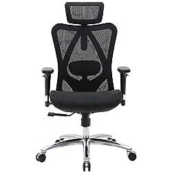 SIHOO Chaise de Bureau Ergonomique,Fauteuil de Bureau,Dossier Haut Respirant, Doux pour la Peau en Maille Chaise Réglable 3D Accoudoir et Soutien Lombaire (Noir)