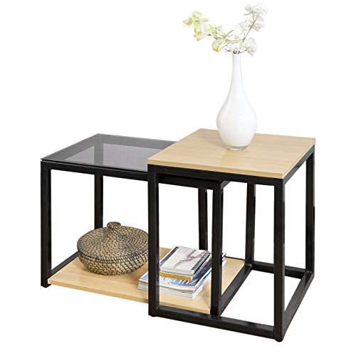 SoBuy® FBT35-Sch Tables Basses Gigognes - Set de 2