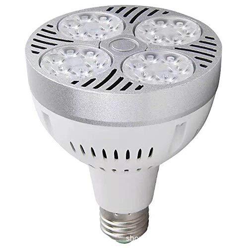 High Power Scheinwerfer 40W Led Birne Licht Spot Licht LED Birnen Lampe Ersetzen Halogen Birne LED Beleuchtung AC220V 3000K (Warmweiß) Bekleidungsgeschäft Supermarkt Lichtquelle E27 -