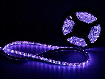 joylit 5m 300led 5050SMD luz azul tira de luces LED resistente al agua lich terkett