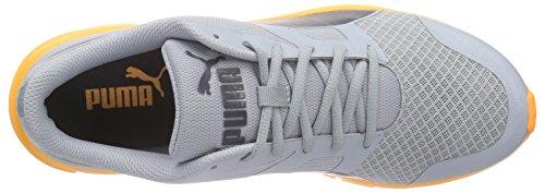 Puma Flexracer, Baskets Basses Mixte Adulte Gris (quarry-asphalt 04)
