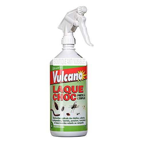 producto-insecticida-elimina-cucarachas-pulgas-hormigas-araas-todos-los-insectos-1l