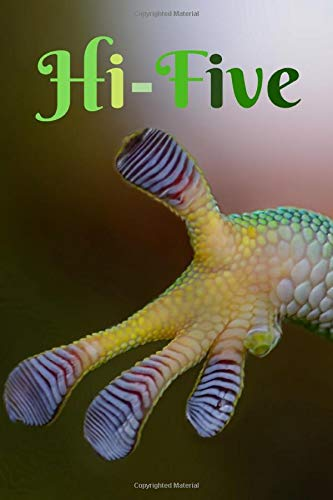 Hi-Five: Funny Notebook For All Gecko Lovers -
