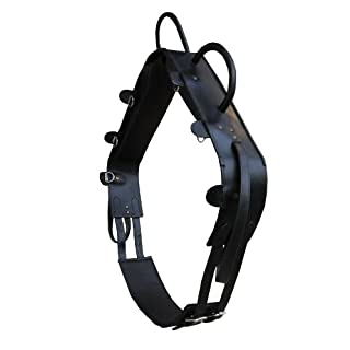 AMKA LEDER Voltigiergurt Shetty mit 2 Beinschlaufen runden Griffen, schwarz hochwertig| Reithilfe Voltigieren Holzpferde