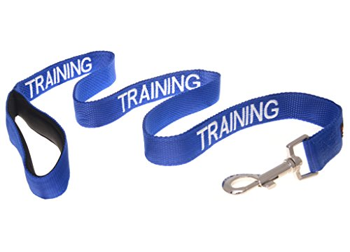 TRAINING-Dog-In-TrainingDo-Not-Disturb-Blue-Colour-Coded-60cm-12m-18m-Luxury-Neoprene-Padded-Handle-Dog-Leads-PREVENTS-Accidents-By-Warning-Others-Of-Your-Dog-In-Advance-12m