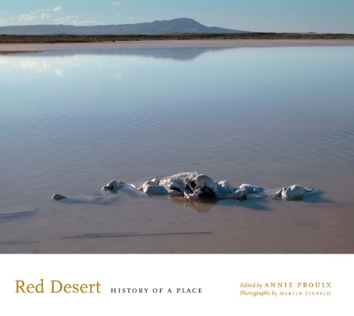 Red Desert (English Edition)