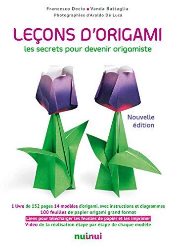 Leçons d'origami - Nouvelle édition