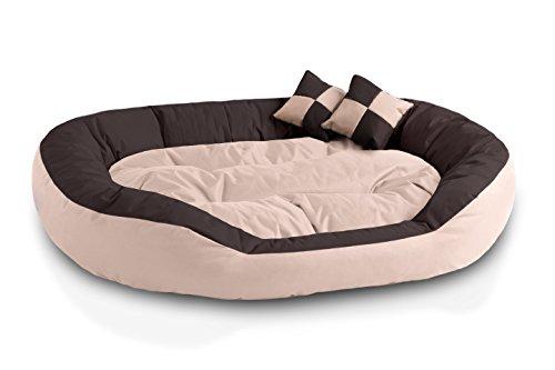 Beddog 4 in 1 letto per cane saba l fino a xxxl, 7 colori a scelta, cuscino per cane, divano per cane, cestino per cane, beige/marronee xxl
