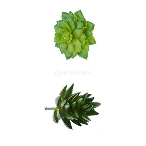 Sharplace Künstliche Mini Sukkulente Kunstpflanz, Alocasia + Haworthia Tortuosa, Haus Büro Pflanzendekor