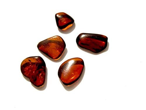 Genuino Ámbar - Oscuras - Juego de 5 Piedras