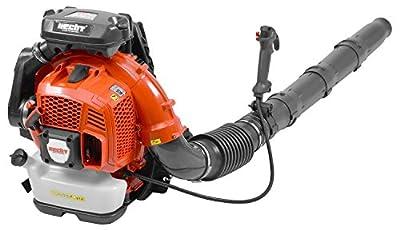 Hecht Rückenlaubbläser 979 Benzin-Laubgebläse Gebläse Laubbläser (4,2 PS | 75,6 CCM)