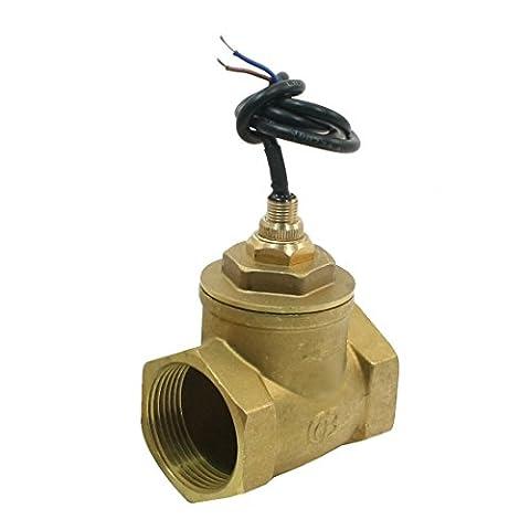 70W 100L/min 11/4pt réglable Paddle Débit d'eau commutateur Flowmeter
