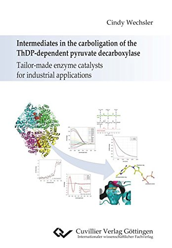 Intermediates in the carboligation of the ThDP-dependent pyruvate decarboxylase: Tailor-made enzyme catalysts for industrial applications