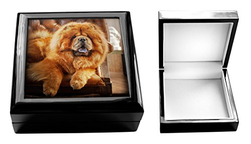 dog-jewellery-box-chow-chow