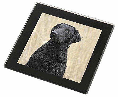 Curly Coat Retriever Hund Glasuntersetzer mit schwarzem Rand Weihnachtsgeschenk (Curly Retriever Coat)