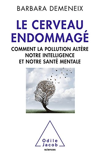 Le Cerveau endommagé: Comment la pollution altère notre intelligence et notre santé mentale