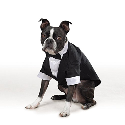 Artikelbild: East Side Collection yappily Ever After Groom Tux, klein