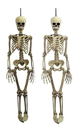 Wangs Aura Halloween Cráneo Esqueletos Huesos Anatomía 38* 12CM Figura de Halloween Party con decoración casa encantada Scary Juguete