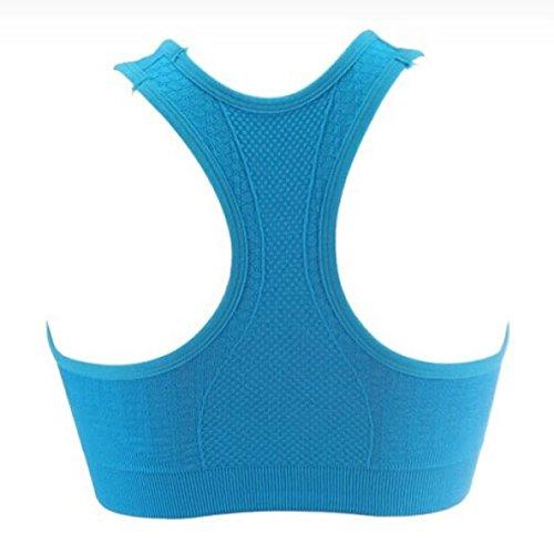 Respirant Rassembler Soutien-gorge Soutien-gorge Antichoc Fitness Sous-vêtements De Yoga Yoga blue