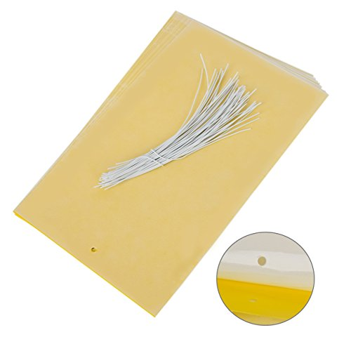 double-sided-insect-yellow-sticky-traps-for-white-flies-aphids-leaf-miner-20