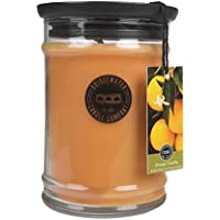Bridgewater Duftkerze Orange Vanilla preisvergleich bei billige-tabletten.eu