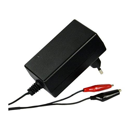 12V 1A LiFePO4 Lithium Motorradbatterie-Ladegerät