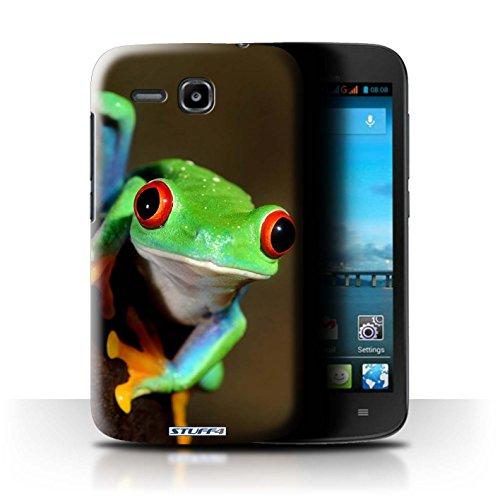 Stuff4 Hülle / Hülle für Huawei Ascend Y600 / Frosch Muster / Wilde Tiere Kollektion