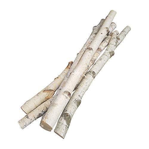 5 Birkenäste | weiße Äste | 50 cm lang u. 1-3 cm breit | Natur-Deko für Bodenvasen | AST-Dekoration im Frühling | Deko