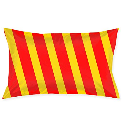 Pillow Protector Red and Yellow Texture Pillowcase - Zippered Pillowcase, Best Pillow Cover - Standard Size 20x30 Inches, Double-Sided Print