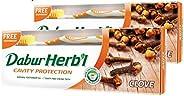 Dabur Herbal Clove Toothpaste, 150 gm + Toothbrush Free (Pack Of 2)