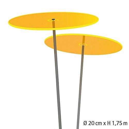 Plaque de li/ège D/ämm Li/ège Parquet Sous-main insonorisation 100/x 50/cm /Épaisseur 20/mm//isolation,//sol//Support//sec Nest Rich//agglom/ér/é