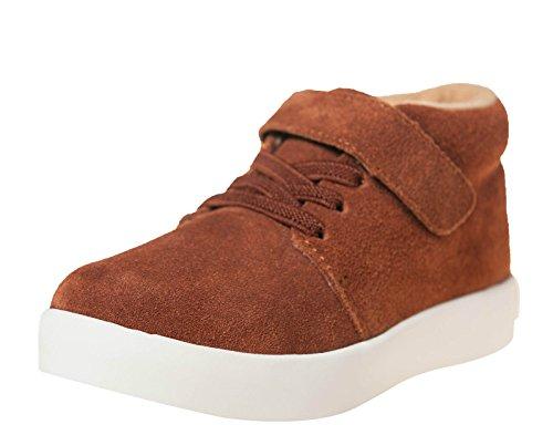 Little blue lamb hi-chaussures top sneaker 7123 daim marron Marron - Marron