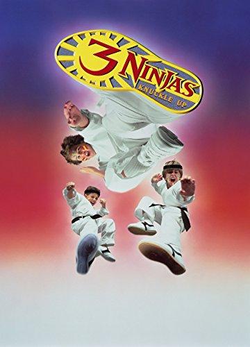 3 Ninjas Fight & Fury Film