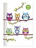 Collegetimer Owls 2018/2019 - Schülerkalender A5 - Day By Day - 352 Seiten