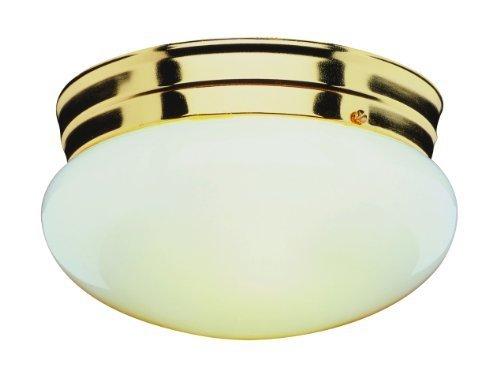 Trans Globe Lighting 3618 ROB 1-Light Flush-Mount, Rubbed Oil Bronze by Trans Globe Lighting -