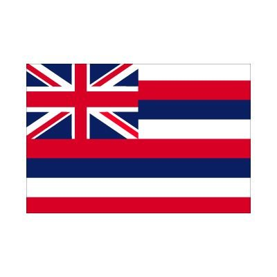 5ft-x-3ft-5x3-flag-hawaii-america-state-american-usa