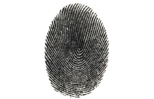The Fingerprint of Christ, Spanish Version