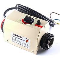 Jian Ya Na 2 KW 50~60 Hz Calentador eléctrico de Piscina SPA baño termostato de bañera Caliente Calentador de Agua eléctrico con Accesorios de Piscina CE 220 V