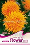 Geeignet für Clump Pflanz Veronica Spicata Samen 100pcs, Eleganz Ehrenpreis Bonsai Blumensamen, Schöne Königskerzen Seeds