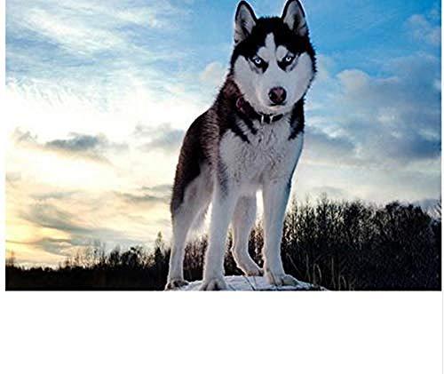 xxiaohh Puzzle 1000 stück DIY 3D Tiere Husky Hund Muster weihnachtsschmuck Klassische Puzzle 3D Puzzle DIY kit holzspielzeug einzigartiges Geschenk wohnkultur