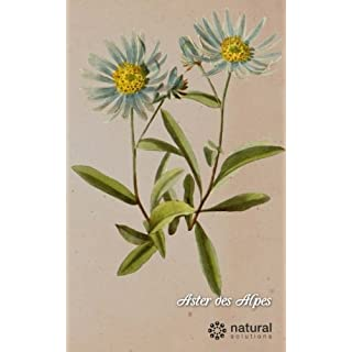 Aster des alpes: cahier pages blanches