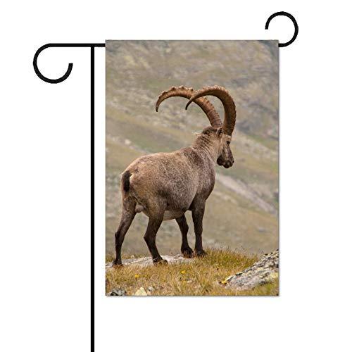 THEHO Alpine Steinbock Ziegenberge Hörner personalisierte Ultra Cotton Garden Flagge 31X46cm; 12x18 inch.46cm;12x18 Zoll.