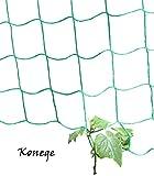 Gewächshaus & Beet Rankhilfe/Ranknetz für alle Kletterpflanzen - Breite 2,0m x Länge 3,0m