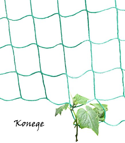 Gewächshaus & Beet Rankhilfe/Ranknetz für alle Kletterpflanzen - Breite 2,0m x Länge 5,0m