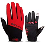Blisfille Motorrad Handschuhe Herren Damen Winter Warme Outdoor Handschuhe Touchscreen Anti Rutsch Stoßdämpfung Winddicht Red Size Large