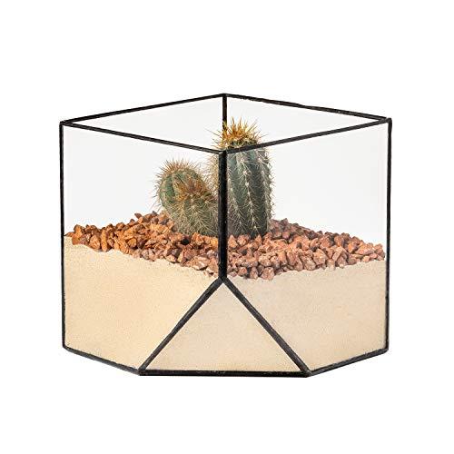 Ultra 15x15x15cm Cuadrado Vidrio Claro Terrario Plantador