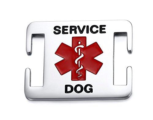 Vnox Edelstahl Pet Medical Alert ID personalisierte Allergieservice für Hundezubehör,frei eingraviert Pet-diabetes-tag